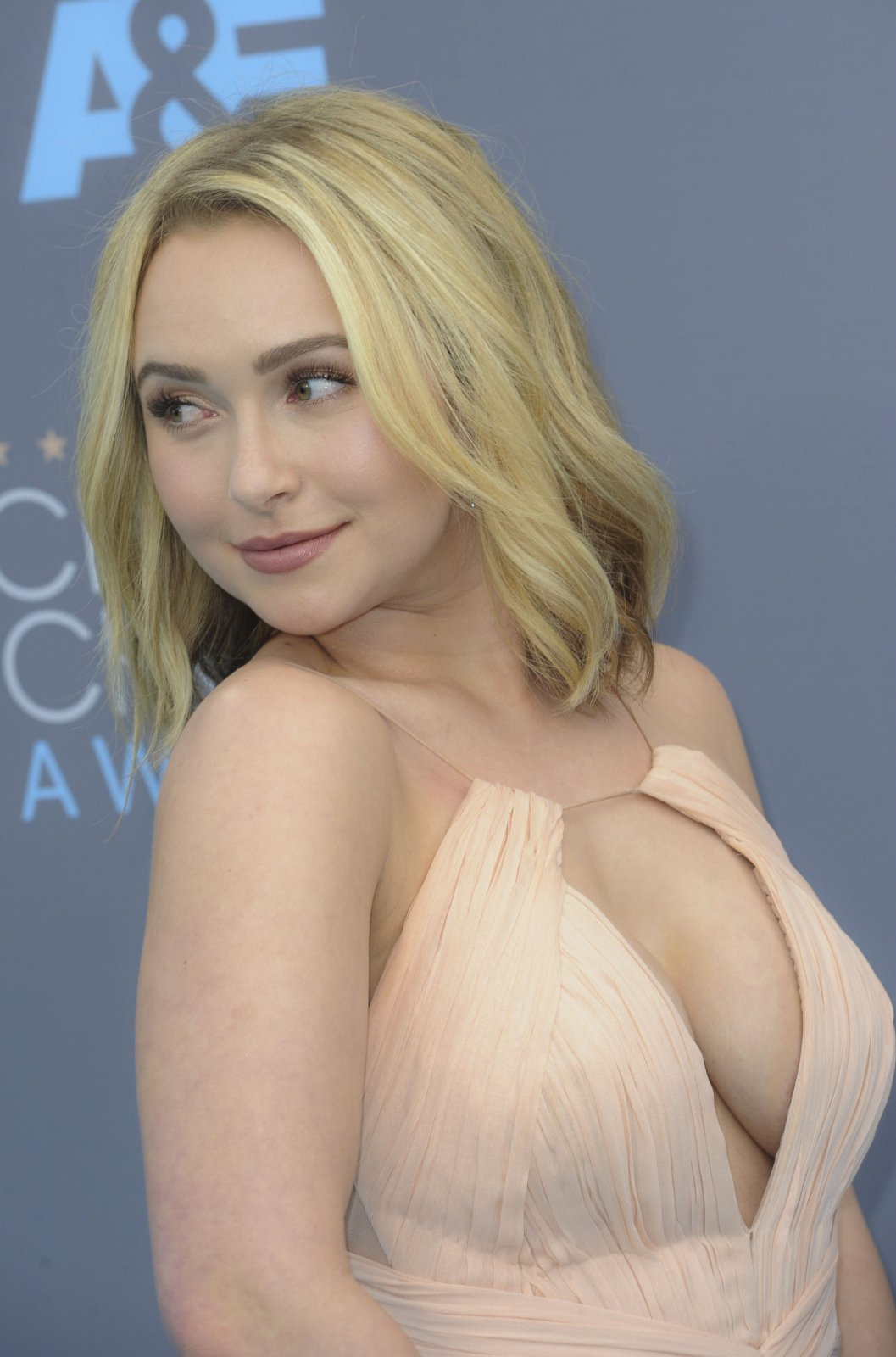 Hayden panettiere nude ass naked
